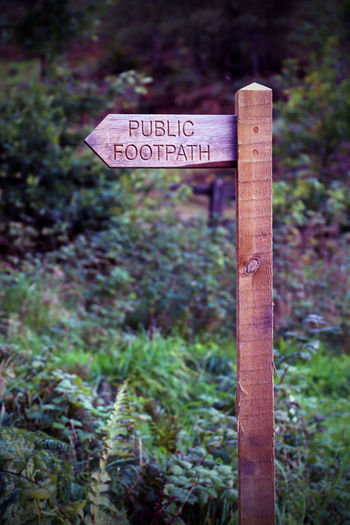 Country Footpath Rambling Sign South West Trekking Wood Beauty In Nature Close-up Communication Countryside Day Fields Focus On Foreground Nature No People Outdoors Public Footpath Signboard Text Tree Walking Welcome Sign Western Script Wood - Material