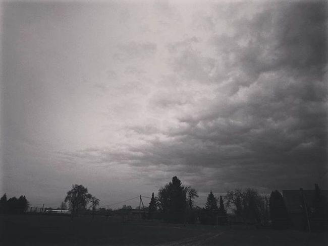 Monochrome Blackandwhite Landscape Landscape_captures Lands Landscape_lovers Landscapephotography Horizon Horyzont Krajobrazy Krajobraz Clouds Cloud Trees Trees Treeofinstagram Tree_captures Xperiaphoto Mobilephotography Instalike Inspiration Bestoftheday