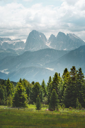 The Dolomites around Val Gardena Mountain Tree Scenics - Nature Landscape Sky Beauty In Nature Scenery Outdoors Forest Tranquil Scene Green Color Day Nature Dolomites Alps Alps Italy Green Color Tranquility Landscape_photography Mountain Peak Langkofel Group