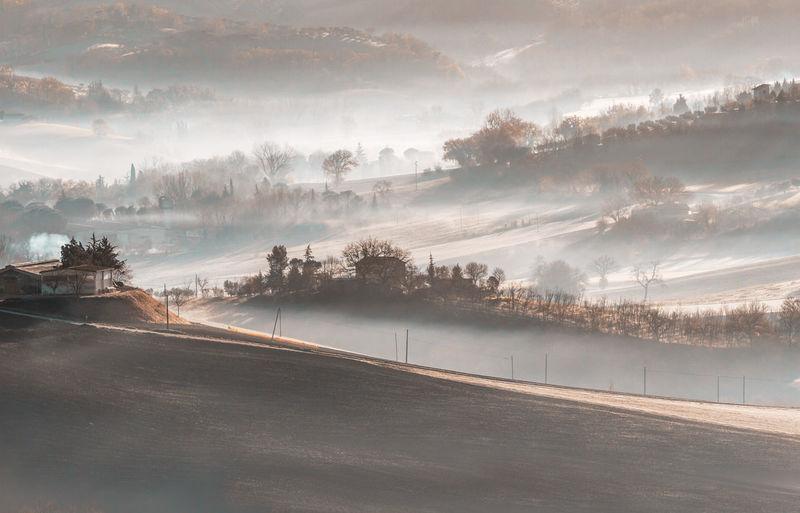 Fog in the
