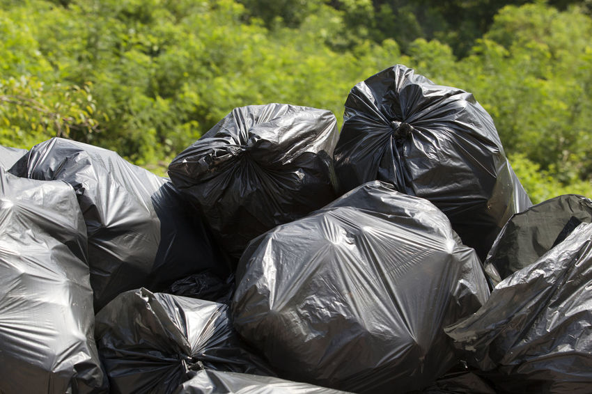 A pile of black garbage plastic bags in the nature Contamination Environmental Pollution Green Junk Nature Trash Trash Bags Concept Ecology Ecology Problem Environment Environmental Probleme Forest Garbage Garbage Bags No People Outdoors Pile Plastic Plastic Bag Pollution Recycle Recycling Waste Waste Management