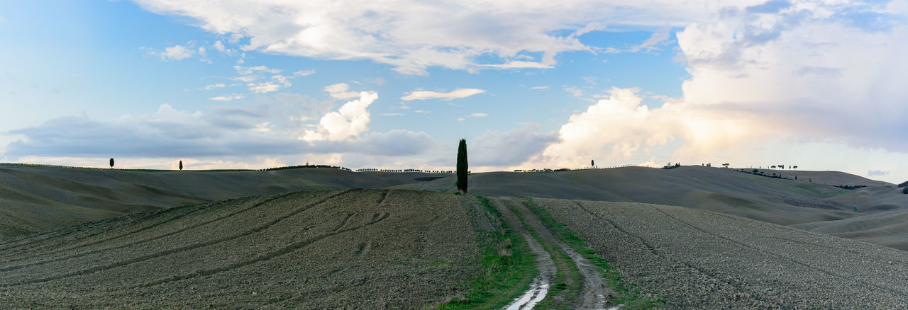 Panoramic view of Val D'orcia valley in autumn Agriculture Beauty In Nature Cloud - Sky Cloudy Day Farm Horizon Over Land Landscape Long Nature Non-urban Scene Outdoors Remote Rural Scene Scenics Sky Solitude The Way Forward Tranquil Scene Tranquility