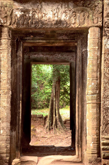 The view through the doorway of an ancient ruin. Abandoned Architecture Bad Condition Brick Wall Built Structure Deterioration Door Doorway Frame Old Robyn Haworth Ruined Temple Tree Tree Trunk Wall