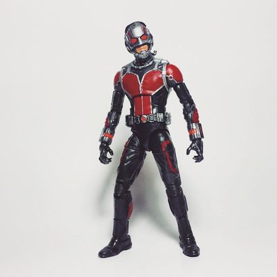 Thanks so much to @vundi for stashing this figure for me! Pretty standard figure, only dislike is his hands. Think I like the tiny version accessorie that comes with him more. Antman Scottlang Hankpym Marvel Marvelcomics Mcu Marvellegends Toys Toyphotography Toypizza Toysarehellasick Toycollector Toycommunity Toycollection Disney Avengers