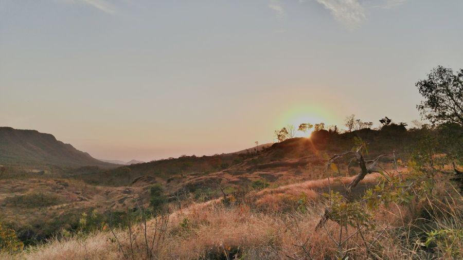 Trilha Vale da Lua Nature Sunset Landscape Outdoors Beauty In Nature No People Scenics Day Rural Scene Sky Grass Tree