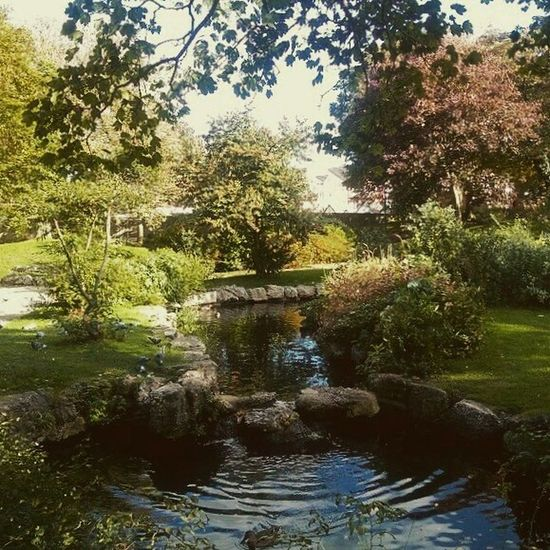 In the Park atAshton Gardens Lytham St Annes Day Outdoors Tree Water Smartphonephotography Check This Out Lancashire UK