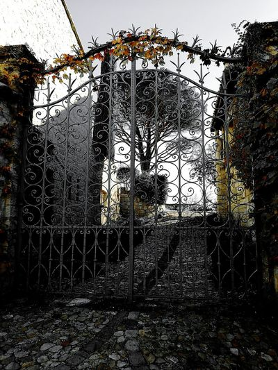 Outdoors Architecture Autumn Collection Automne🍁🍂🍃 Architectural Feature Beauty In Nature Autumn Colors Architecture France Villeneuve-lez-avignon