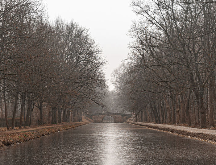 Canal amidst bare trees against sky