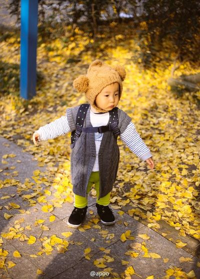 Paint The Town Yellow Autumn Babies Only Blond Hair Change Childhood Close-up Cute Day Full Length Happiness Leaf Nature One Person Outdoors People Playing Smiling Tree Walking Warm Clothing Yellow