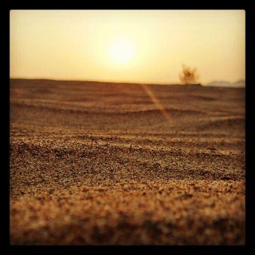 السعودية  طعوس  بر  رمل تصويري