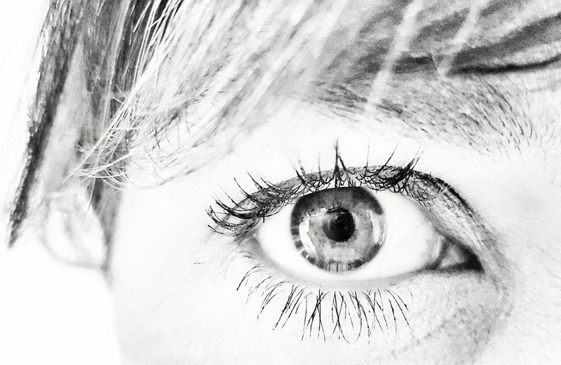 Human Eye Human Body Part One Person Looking At Camera Portrait Adults Only People Close-up Eyesight Adult Eyelash Only Women One Young Woman Only One Woman Only Young Adult Eyeball Day