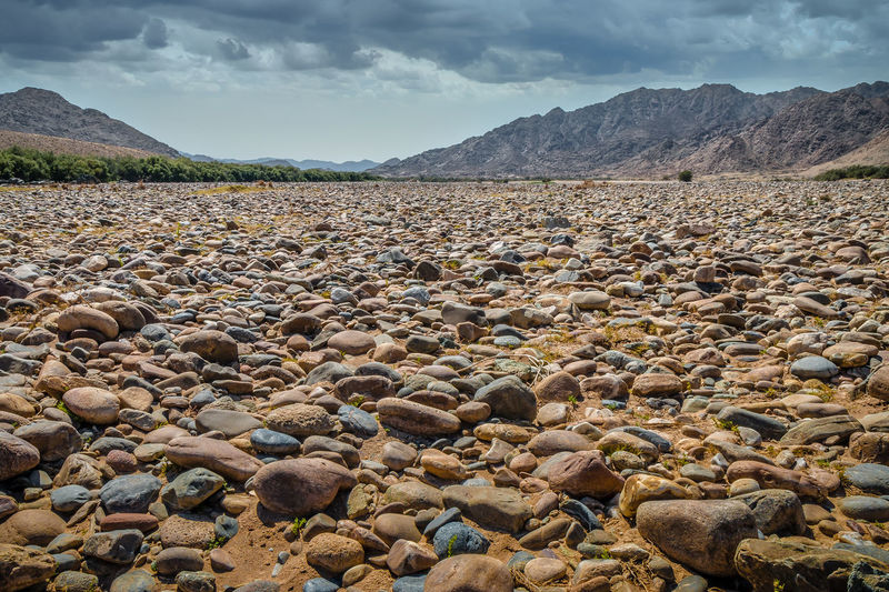Surface level of rocks on shore against sky
