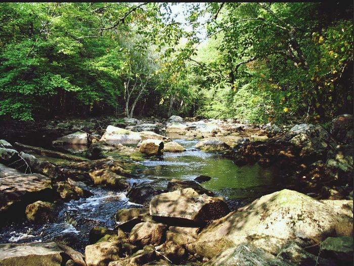 Landscape Kejimkujik Nationalpark Canada