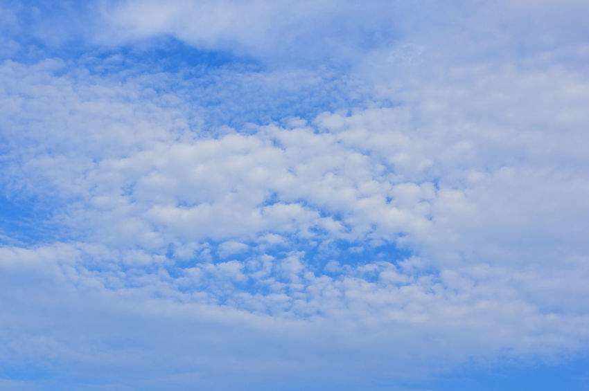 White cloud as heaven on the blue sky as a background. Atmosphere Beautiful Cloud Heaven High Peace Scenic Weather Air Background Blue Climate Cloudscape Cumulus Day Daylight Meteorology Moisture Nature Nebulosity Outdoor Season  Sky Tranquility White