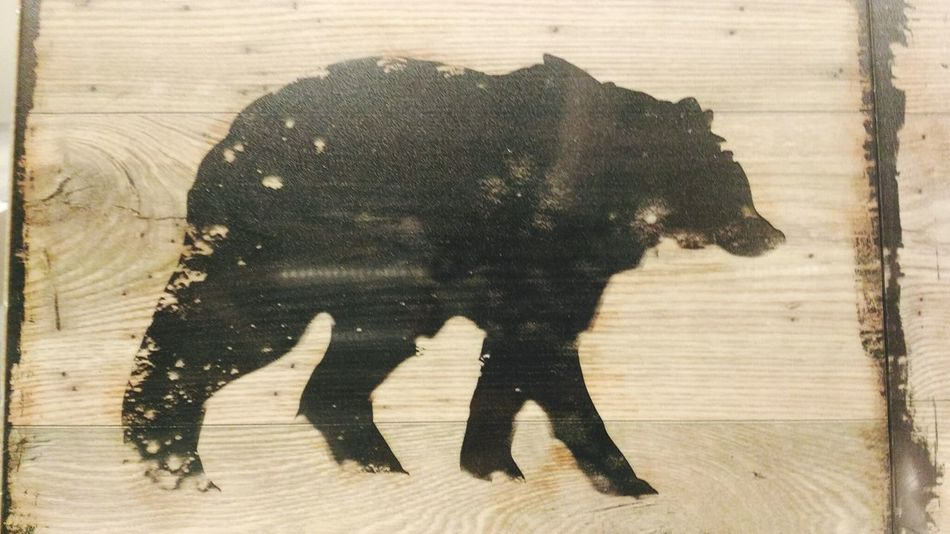 El camino hacia la lucha se hace cada día. Mammal Elephant No People Outdoors Day Close-up African Elephant Bear Oso  Madera Amano Osopardo Dibujo Art Tumblr