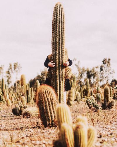 Mid Distance View Of Man Hugging Cactus Plant On Field Against Sky