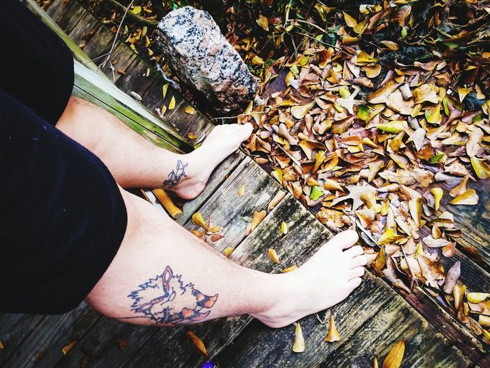 Fall feet Houston Arcanine Pokémon Tattoo High Angle View Day One Person Low Section Human Leg Outdoors People Real People Nature