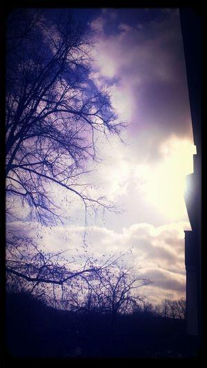 Berlin Sonne