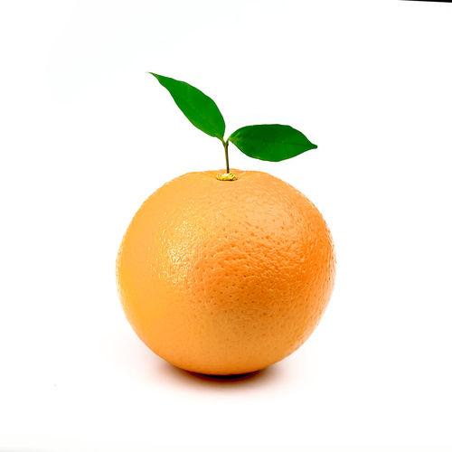 Citrus Fruit Close-up Cut Out Food Food And Drink Freshness Fruit Healthy Eating Indoors  Leaf Nature No People Orange Orange - Fruit Orange Color Plant Part Ripe Still Life Studio Shot Wellbeing White Background