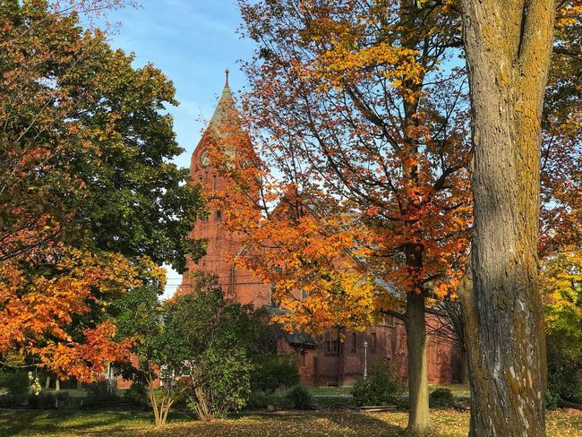 IPhoneography Iphone7plusphotography Vermont Vermontphotography Vermont, USA Autumn Colors Autumn Church Taylor Park St Albans First Congregational Church Greenstate