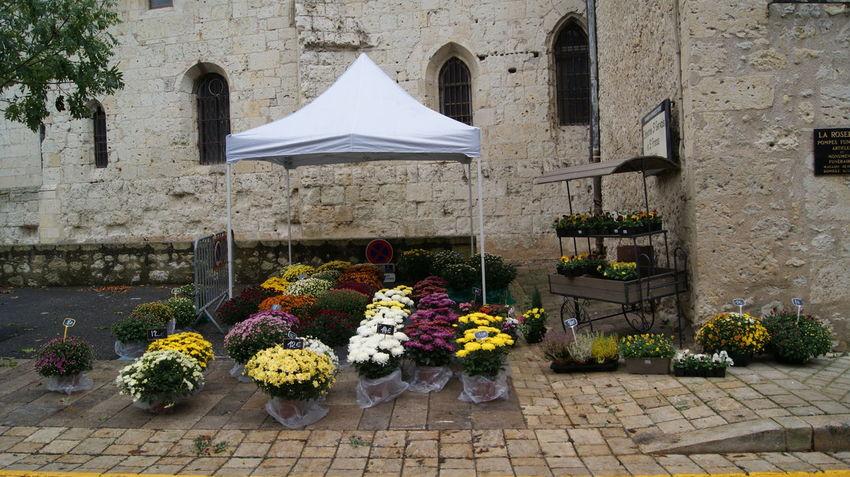Architecture Beauty In Nature Bouquet Building Exterior Built Structure Day Florist Floristry Flower Flower Arrangement Flower Shop Fragility Freshness Nature No People Outdoors Plant Shop Store