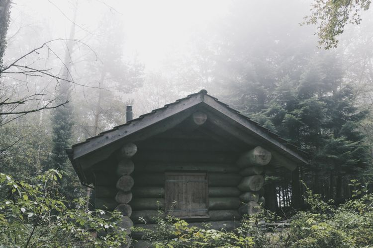 Exterior of house in forest against sky during foggy weather