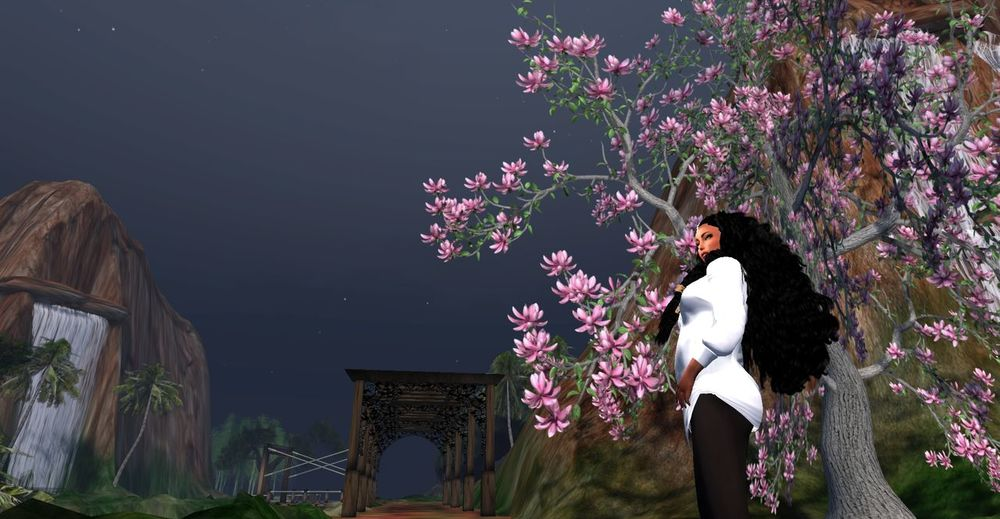 This week is Love and Divinity's (LDM) Bday Anniversary We turn 11 years old. A Special Thank you to US, UK, France, Germany, Russia, and Asia over the yrs. Digital Art Nature Outdoors Secondlife Secondlifeavatar Traveling Travelling Travelphotography