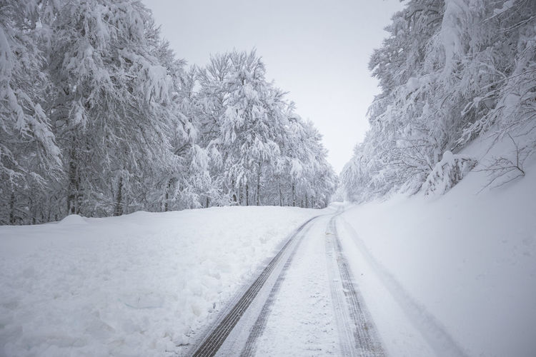 Snow covered road amidst trees against sky