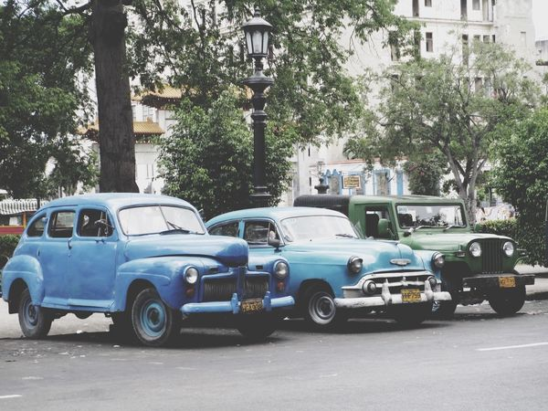 Cuba Oldschool Cars Oldtimer Waiting In Line Blue Green  Pastel Power