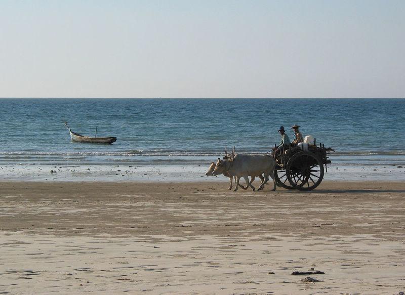 Beach Beach Life Burma Coastline Horizon Over Water Journey Land Vehicle M Old Transport Transportation Traveling
