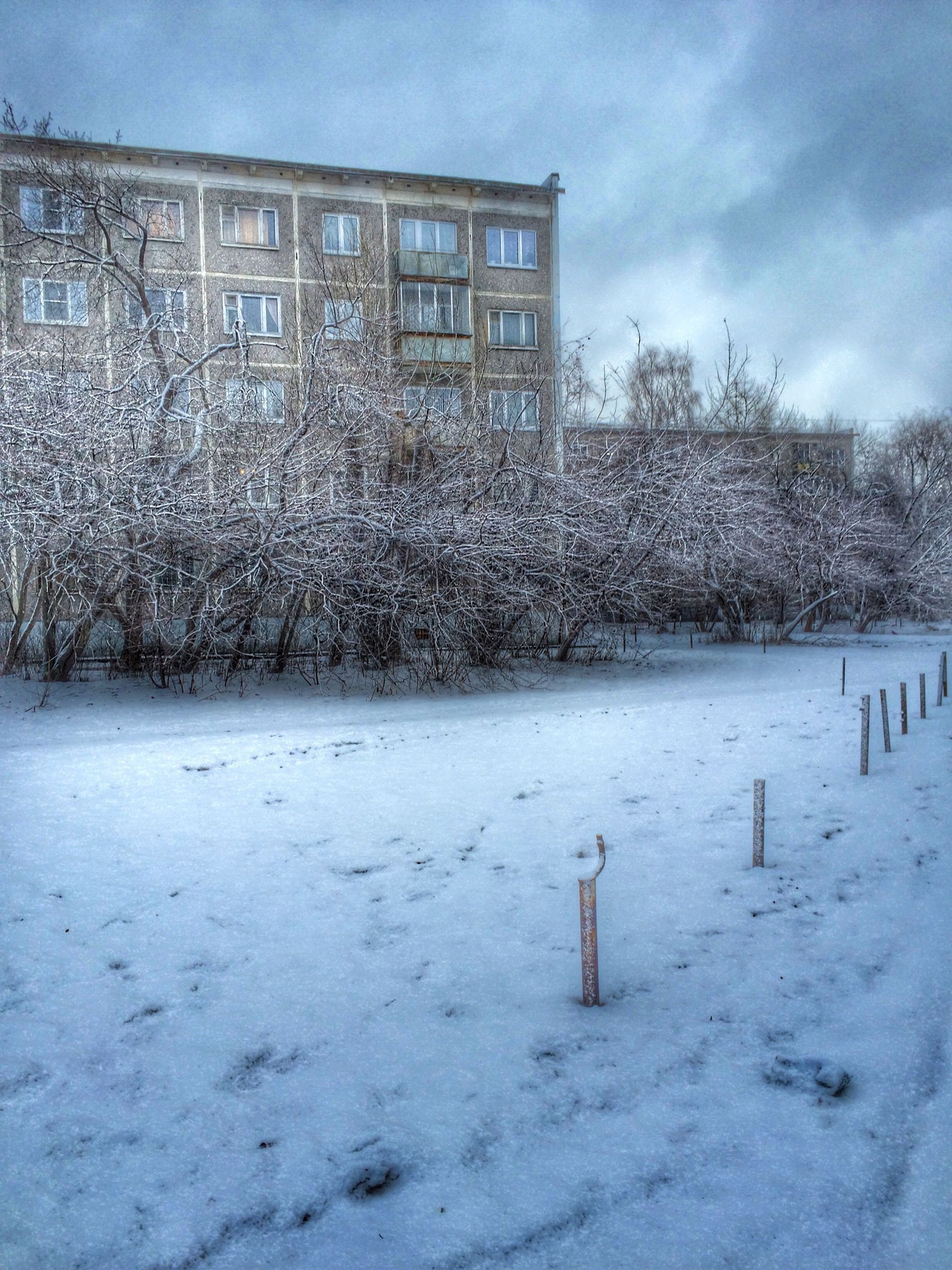 snow, winter, cold temperature, season, weather, building exterior, architecture, built structure, sky, covering, field, tree, white color, nature, landscape, house, day, cloud - sky, covered, tranquility