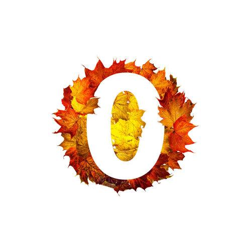 Digital composite image of orange flower against white background