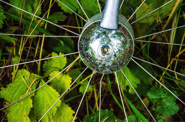 Spokes in the bushes. Wheel Bicycle Nature