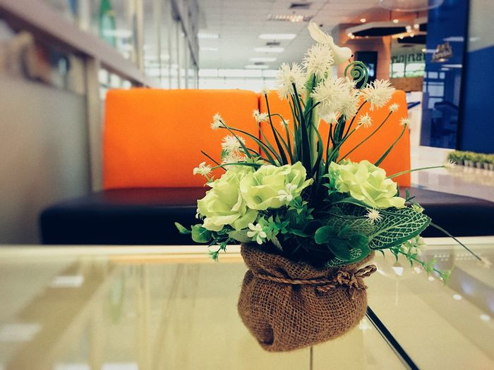 flowers on table Flower Indoors  Orange Color Focus On Foreground Freshness No People Flower Head Vase Close-up Nature Fragility Beauty In Nature Bouquet Day