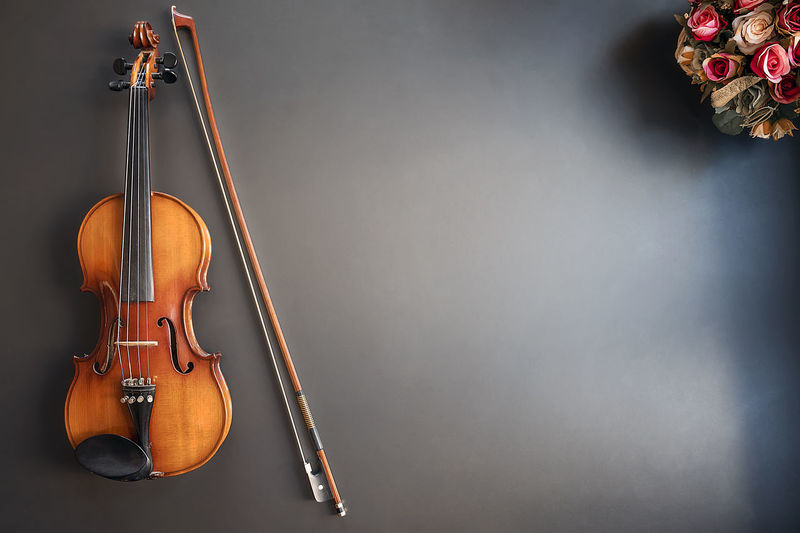 High angle view of violin and flowers against gray background