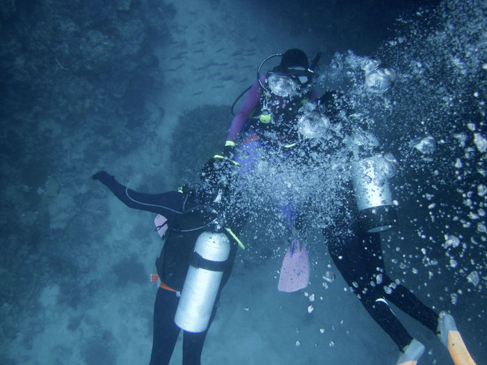 People scuba diving undersea