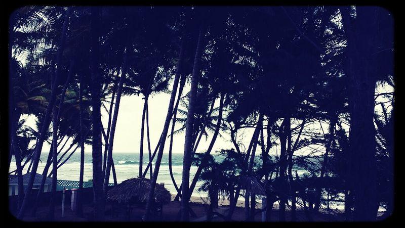 The island life ? Islandlife Beach Scenery MondayMorning Here I Am