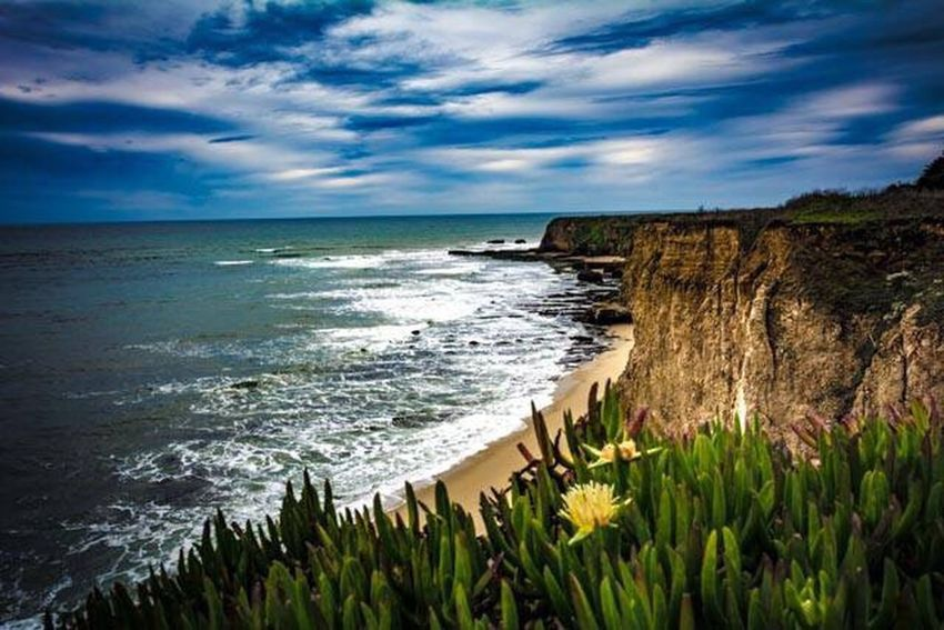 Davenport Beach Sea Beach Horizon Over Water Nature Coastline Cliff Scenics No People Outdoors Water Beauty In Nature Sand Wave Sky Day ocean