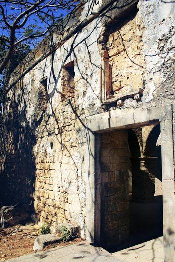 Spooky Haunted House Tree Ancient Ruins MughalEra No Entry Diufort Gujarat Incredible India