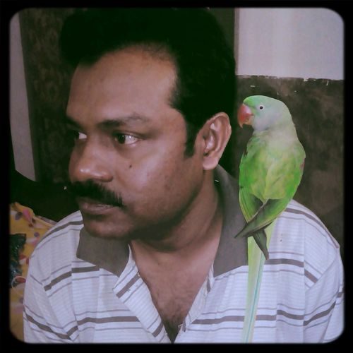 RePicture Team its my father and the parrot is our heart. Yes they both are a team together. Parrots Photo Contest Incredible India