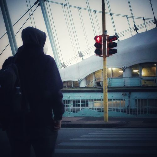 Rear view of man walking on illuminated street