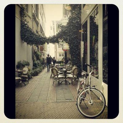 Типичная улочка Амстердама