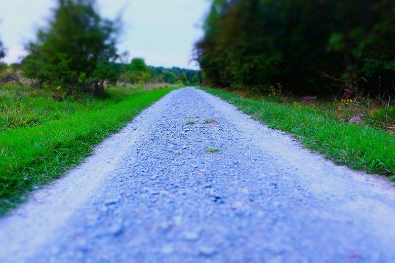 Der Weg ist das Ziel Nature Photography Nature Landscape Miniature Effect Traveling