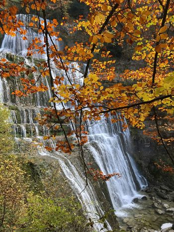 Autumn Nature Beauty In Nature Water Tree Leaf Scenics Orange Color Change Rock - Object Tranquility Travel Destinations Non-urban Scene Outdoors No People Forest Day Motion Natural Phenomenon Waterfall Cascade du hérisson