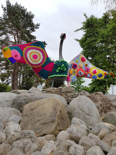 Dressed Up Yarn Bombing Animal Representation Creativity Multi Colored Outdoors Rocks Sculpture Solid Spread Wings Swan Warm Clothing