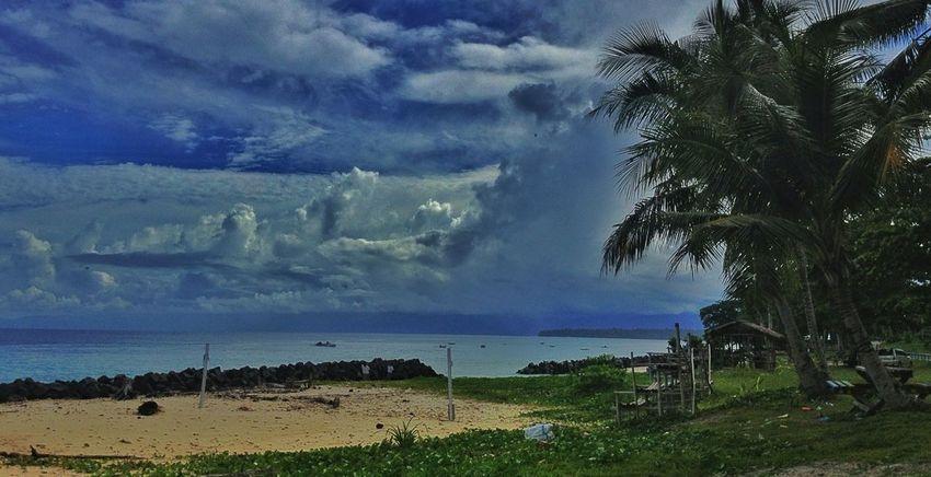 The Coconut Trees,Abasi Beach-Manokwari,WestPapua