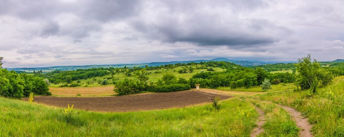 Tranquil Scene Landscape Agriculture Rural Scene Tranquility Scenics Field Panoramic Beauty In Nature Tree Nature Cloud - Sky Sky Cloudy Landscape_photography Hungary Pilis Kesztölc