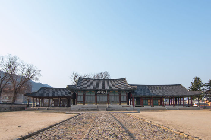 This museum photo was taken at Naju, South Korea. Naju South Korea Travel Architecture Building Exterior Built Structure Clear Sky Day Musium Musium Of Art No People Outdoor, Isolated, Wood, Tree, Forest, Natural, Design, White, Autumn, Dead, Winter, Plant, Seasonal, Vector, Deciduous, Trunk, Bare, Background, Branch, Silhouette, Nature, Environment, Pattern, Black, Dry, Season Outdoors Sky Travel Destinations Tree