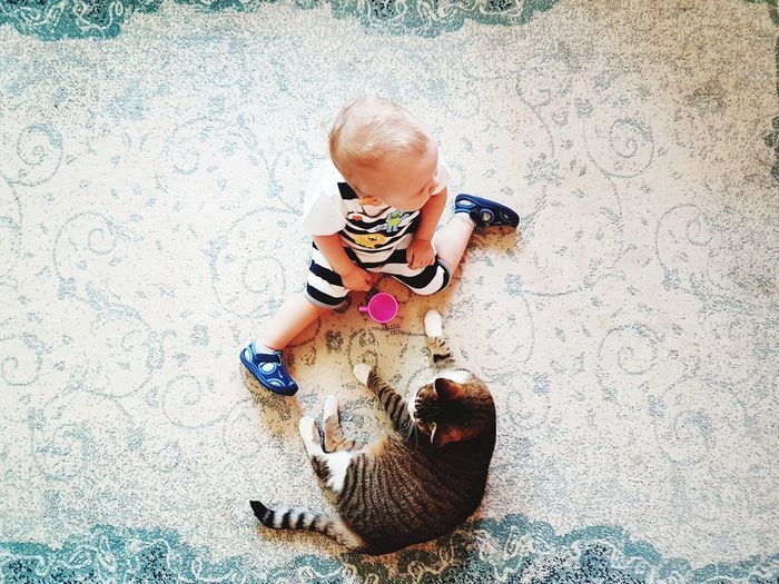 High Angle View Of Girl With Cat At Home