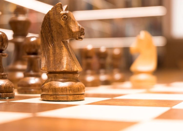 Chess - the knight Hourse Board Game Chess Chess Board Game Leisure Games Chess Piece Indoors  Strategy Leisure Activity Still Life Close-up Checked Pattern Focus On Foreground Knight - Chess Piece Relaxation Table